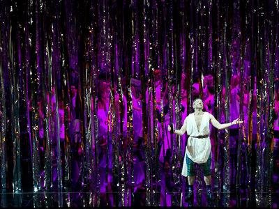 Transparent mirror film CARNEVAL, metallic silver became foil strip curtain NIAGARA XL